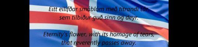 Ab heute bin ich dafür, dass Island die EM gewinnt!