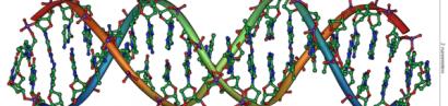 Das erste Buch im DNA Code – Was haben wir für einen Schöpfer