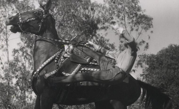 Der Christ ist wie ein betrunkener Reiter, er kann rechts oder links vom Pferd fallen. Balance halten!